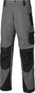 Where to rent DICKIES PRO CARGO PANT in Huntsville ON