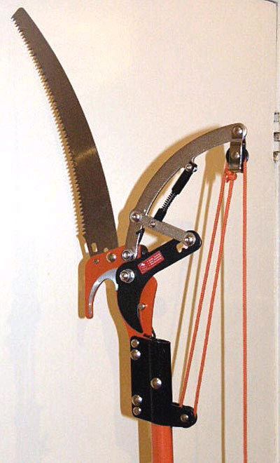 Where to find SAW, PRUNING   CLIPPER 10 POLE in Huntsville
